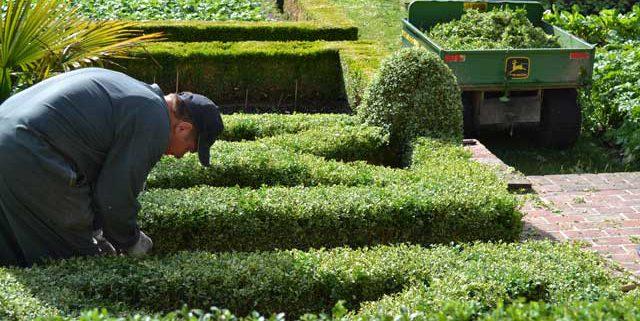 Entretien de jardin en Normandie