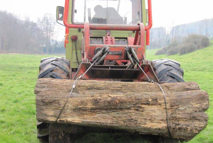 Location : Tracteur d'élagage avec treuil