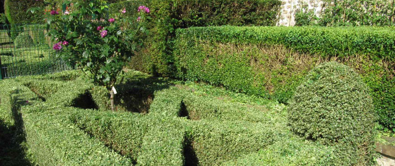 Tonte et contrat d 39 entretien des espaces verts heureux for Contrat entretien jardin