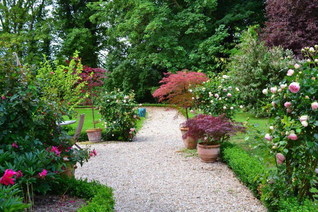 plantation et taille des rosiers soci t normande du paysage. Black Bedroom Furniture Sets. Home Design Ideas