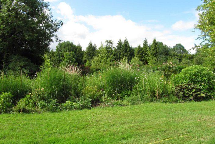 Entretien des massifs : massif de vivaces au fond d'une pelouse