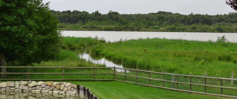 Tonte et contrat d 39 entretien des espaces verts heureux for Contrat entretien espace vert