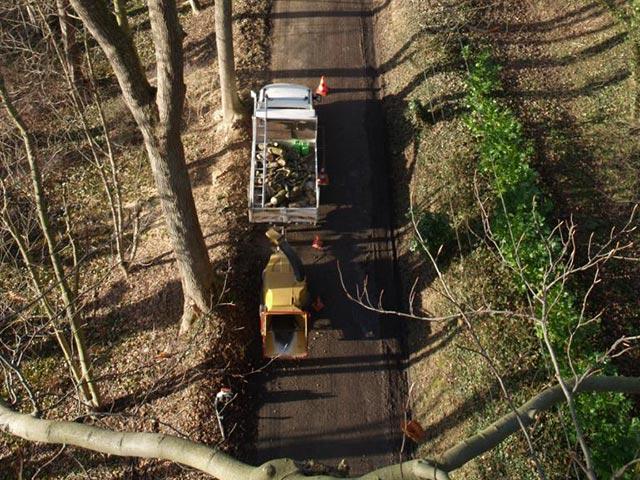 Elagage depuis une nacelle à Pont-Audemer (vue d'en haut)