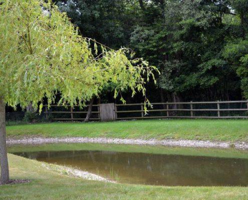 Création d'un plan d'eau en forme d'étang